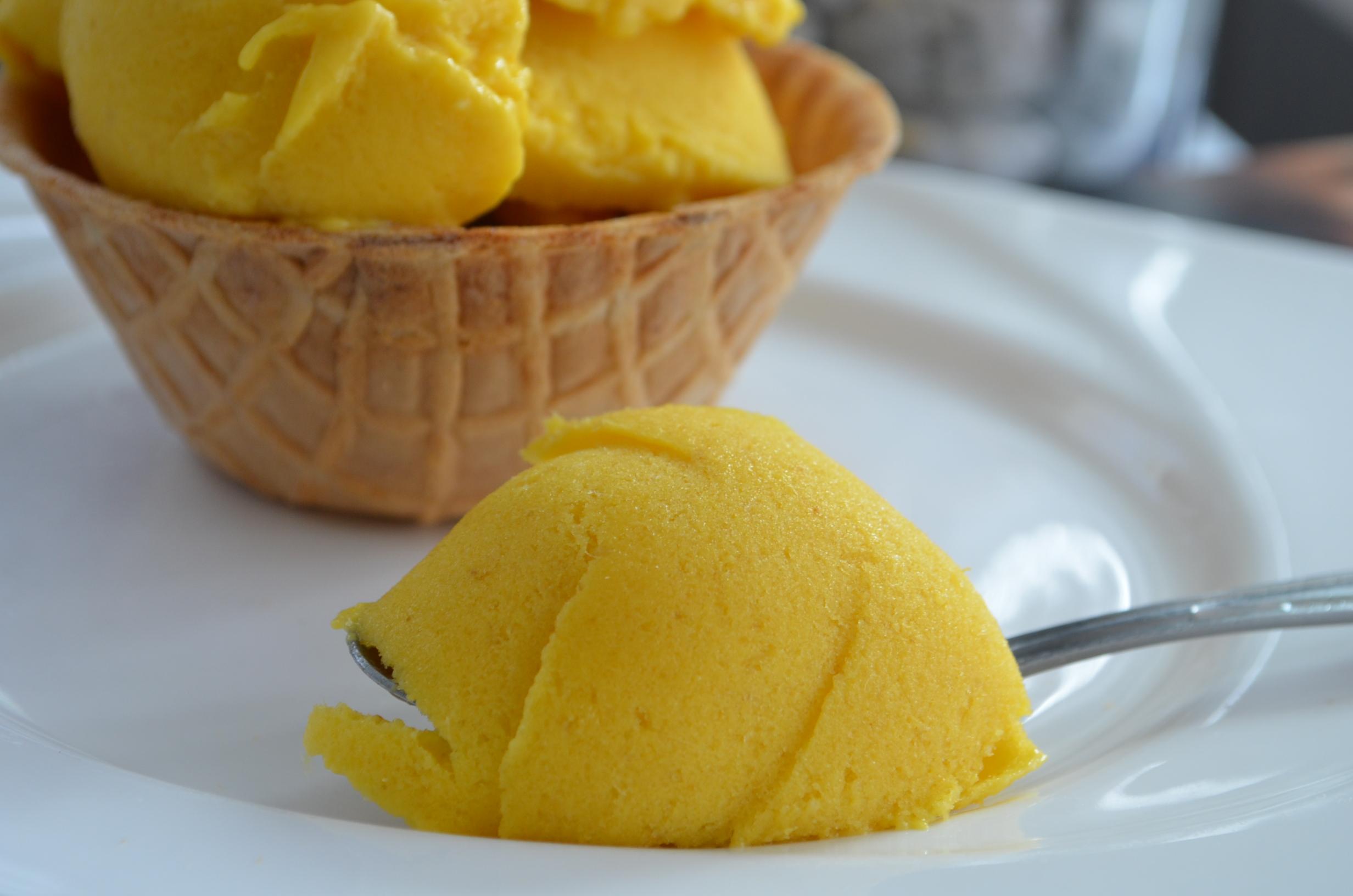 Mango Frozen Yogurt Small Batch