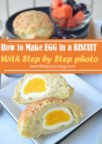 Egg In A Biscuit Blog