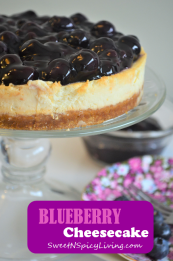 Blueberry Cheesecake 3