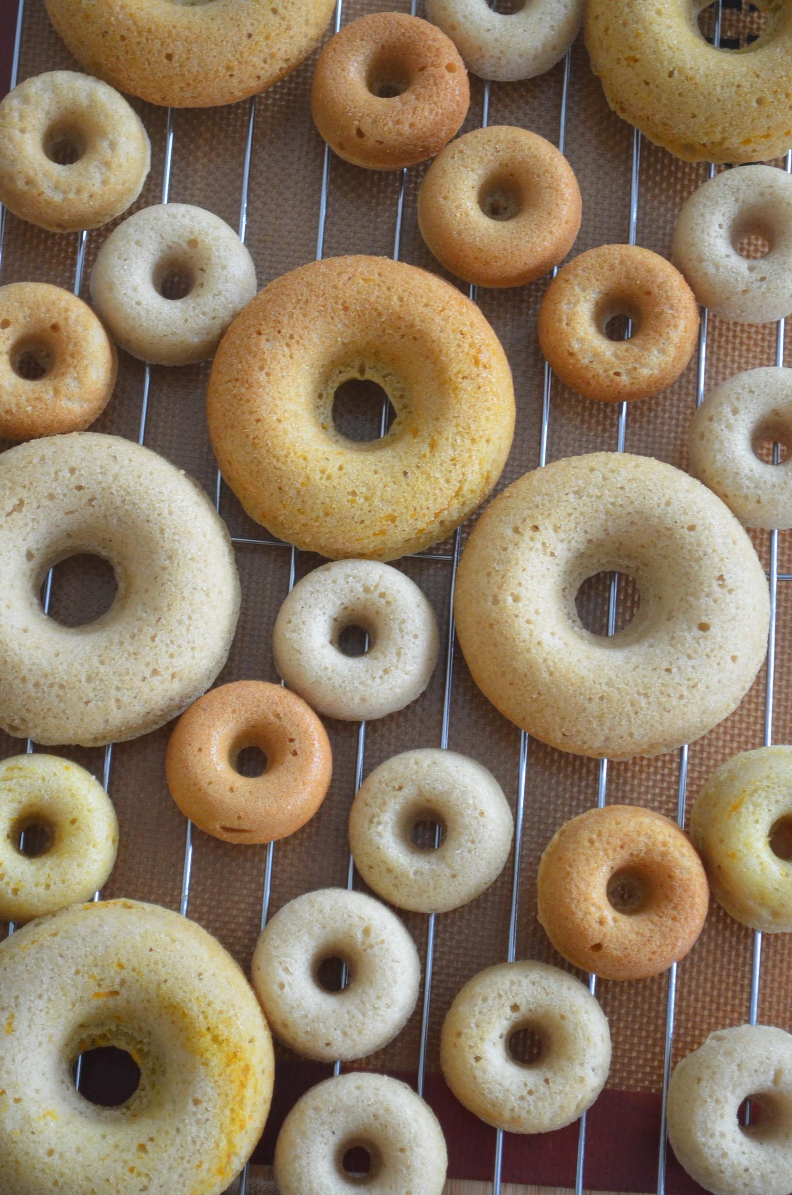 Mini Blueberry Bake Dougnut Recipe