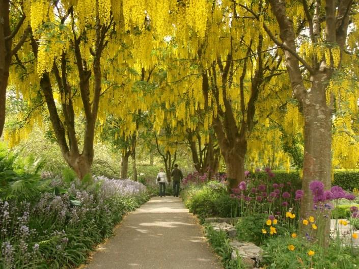 Spring in Vandusen Botanical Garden, Vancouver BC