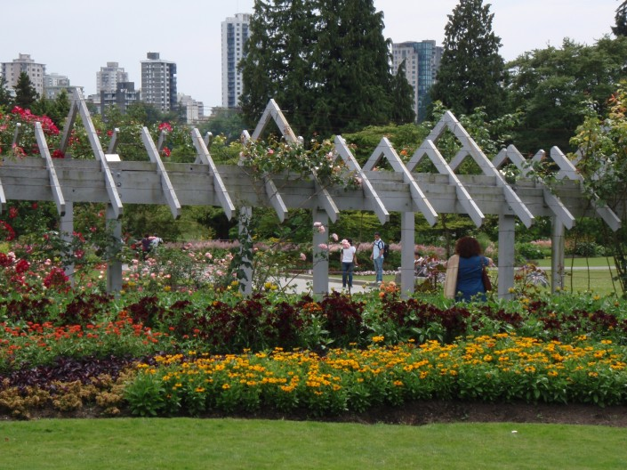 Stanley Park Rose Garden