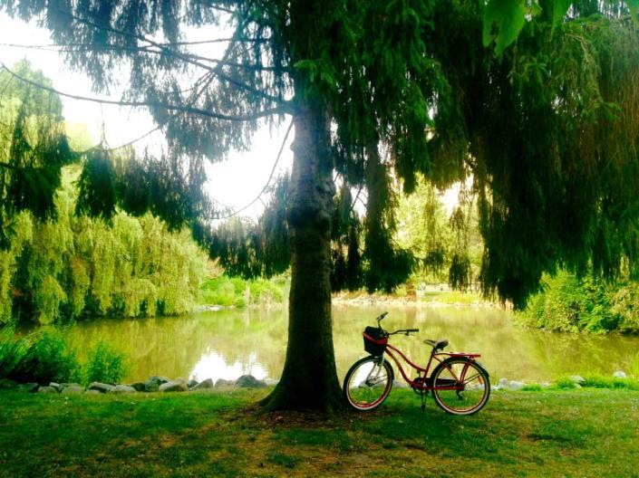 Minoru Park, Richmond BC