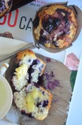 Blueberry Greek Yogurt Muffin by SweetNSpicyLiving.com
