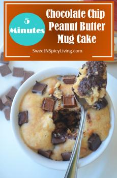 Chocolate Chip Peanut Butter Mug Cake 2