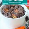 Chocolate Peanut Butter Mug Cake1