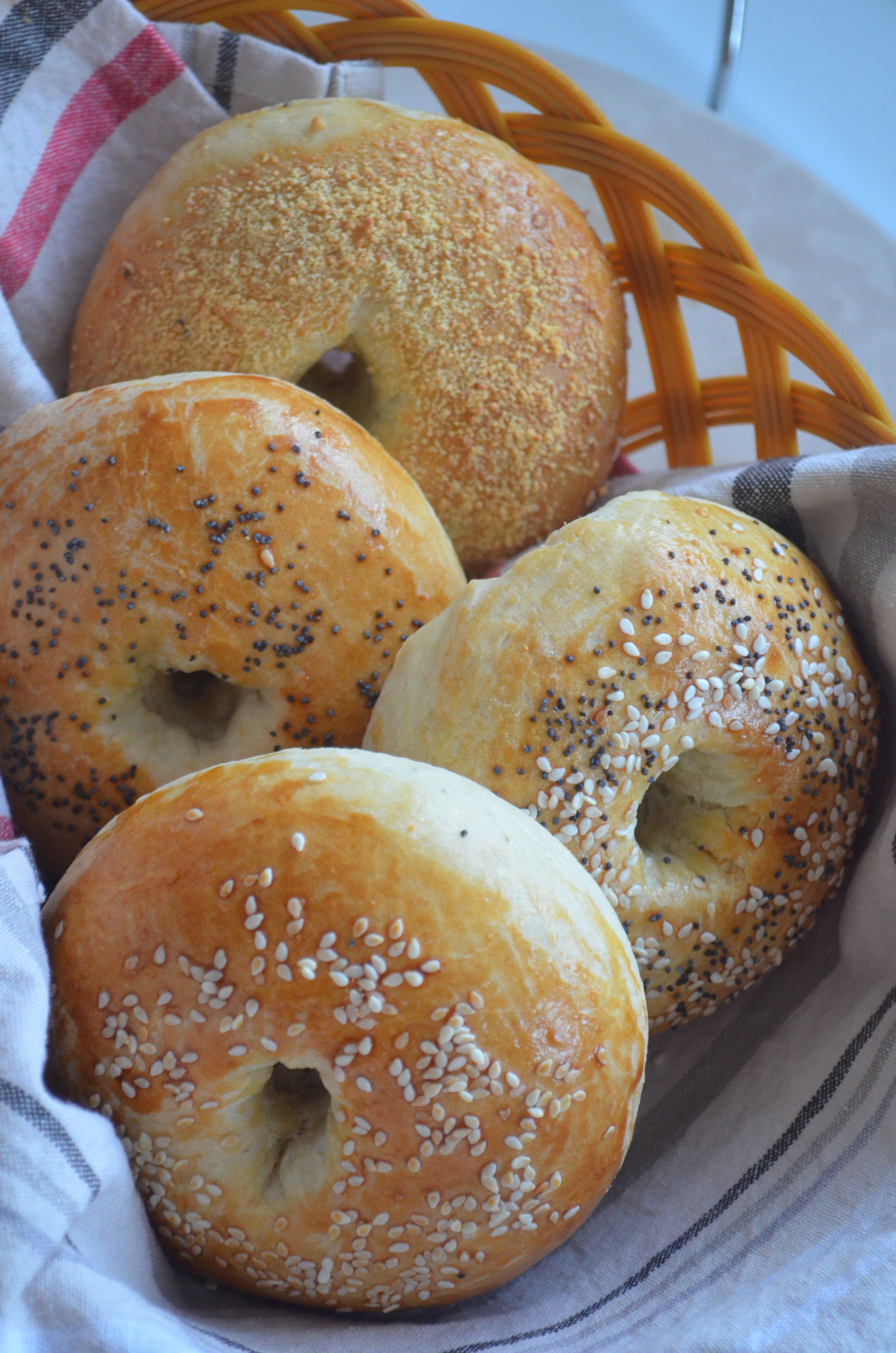 Small Batch Homemade Bagel