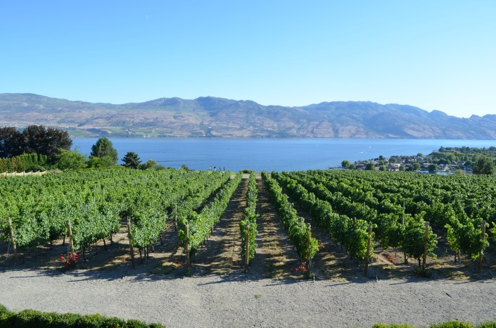 Kelowna Winery Mission Hill