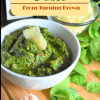How To Keep Pesto from TurningBrown