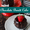 Mini Chocolate Bundt Cake ForTwo