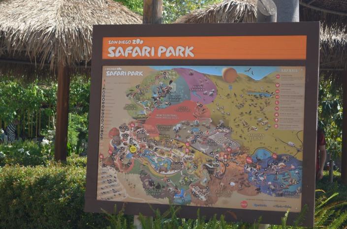 Zafari Park San Diego