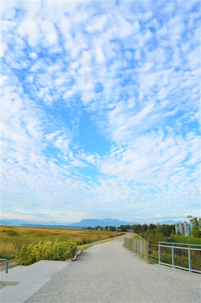 Cycling West Dyke at Richmond BC