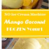 Mango Coconut FrozenYogurt
