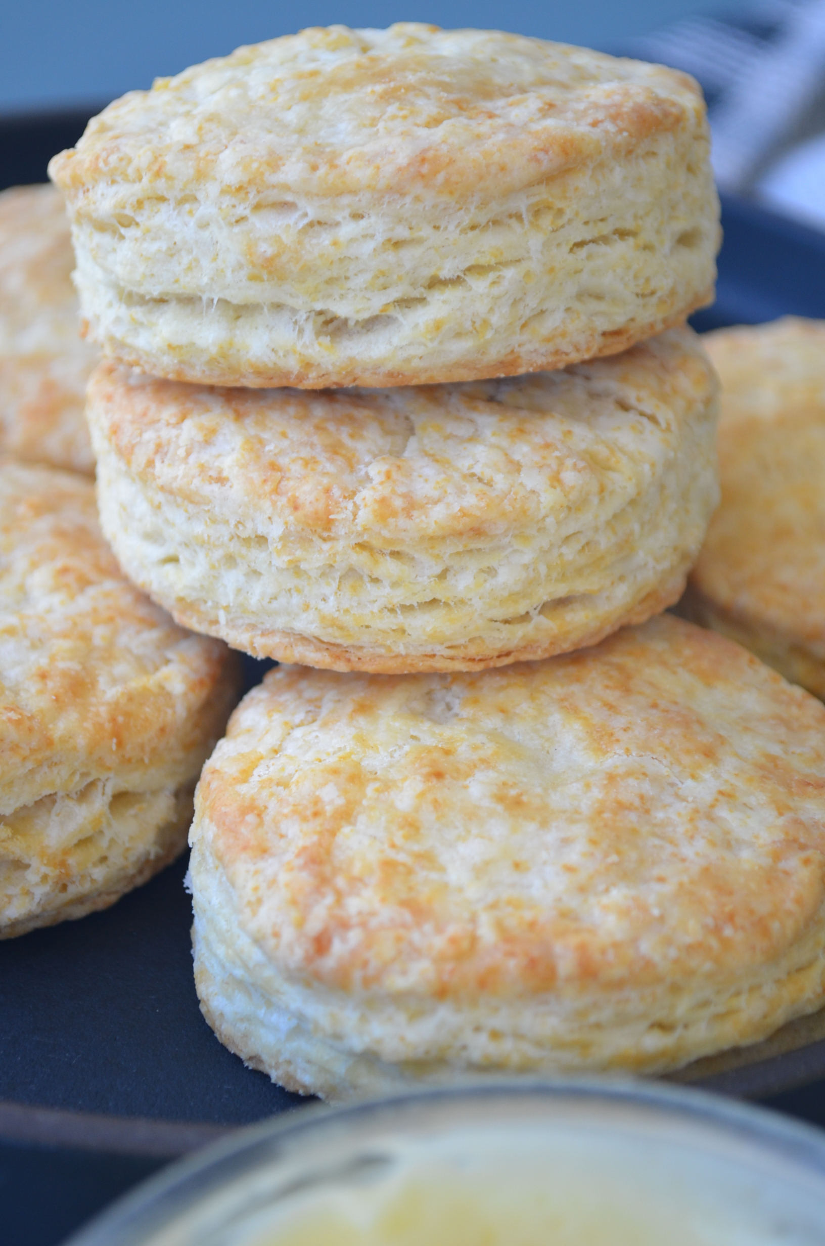 Tricks for a Flakey Buttermilk Biscuit By SweetnSpicyLiving