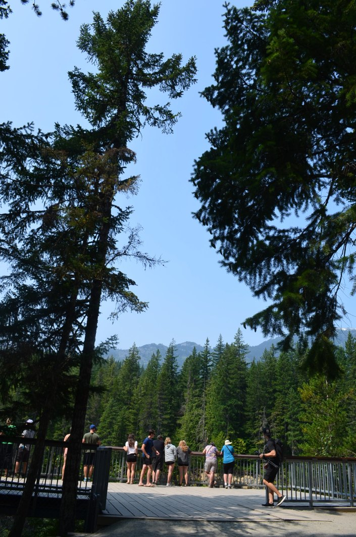 BrandywineFall Provincial Park Lookout