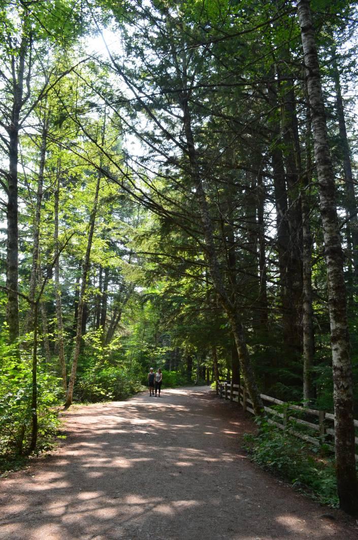BrandywineFall Provincial Park