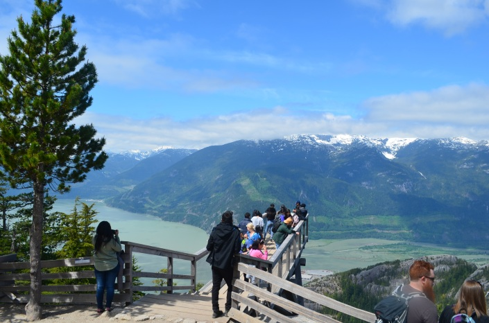 Chief Overlook Viewing Platform