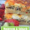 Mushroom and SpinachQuiche