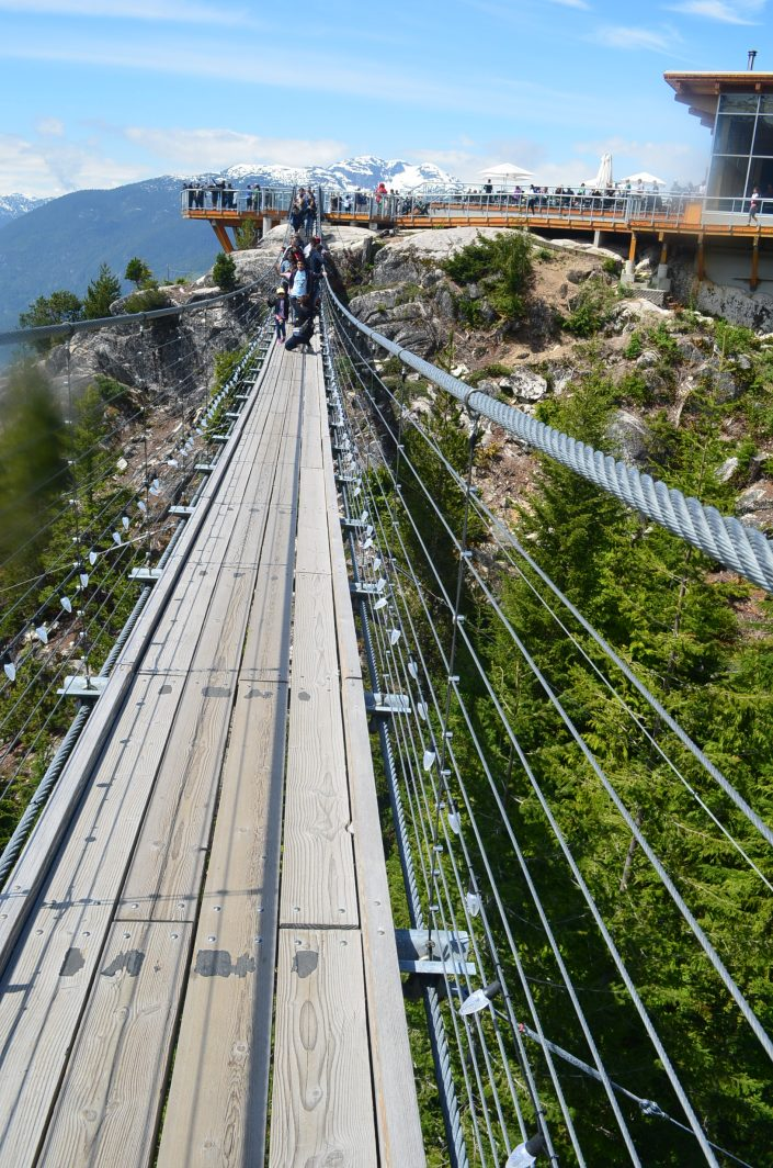 Sea To Sky Pilot Suspension Bridge