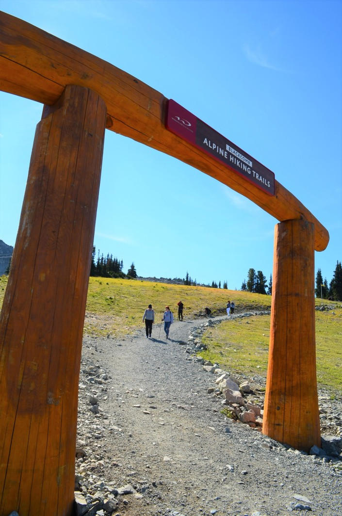 Alphine Walking Whistler Blackcomb