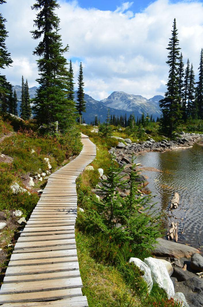 Harmony Trail Whistler