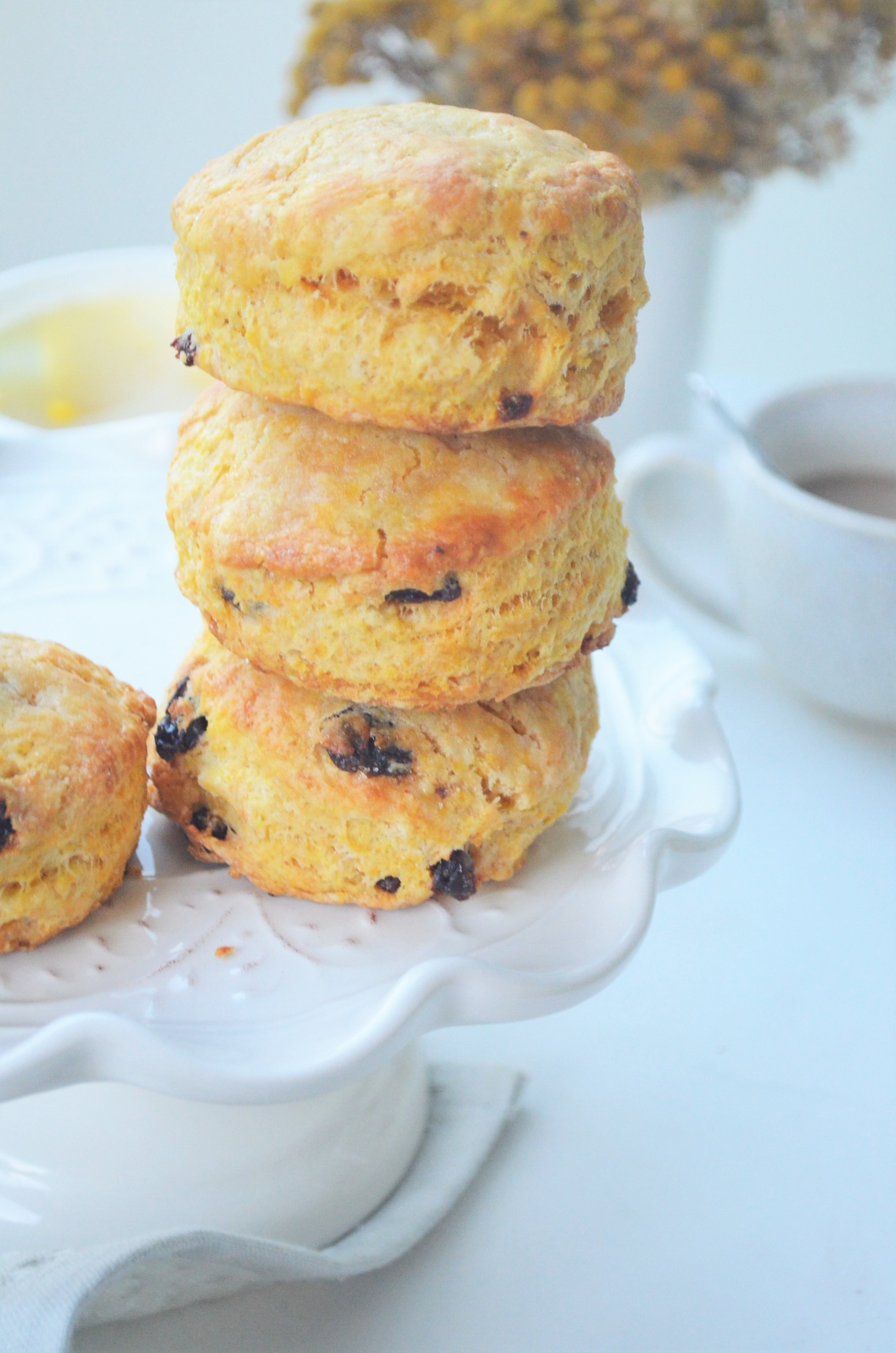 Pumpkin Raisins Biscuit By SweetnSpicyLiving