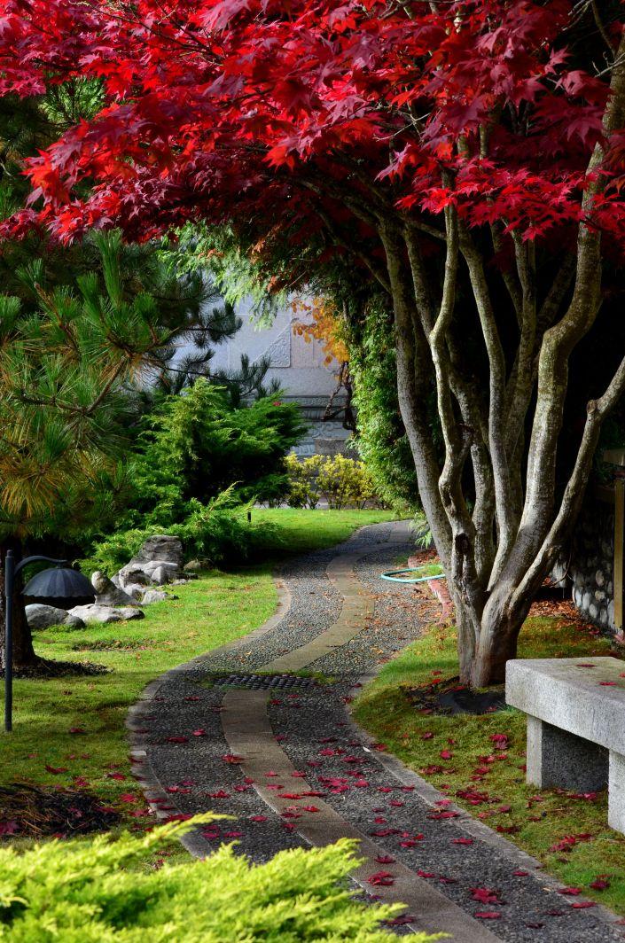 Fall Season Chinese Temple Richmond BC
