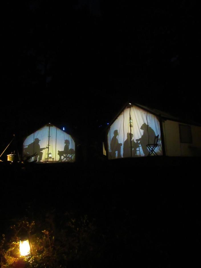 Vallea Lumina Show