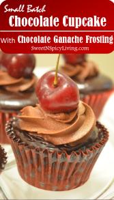 chocolate cupcake with chocolate ganache