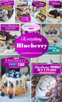 Everything Blueberry 2