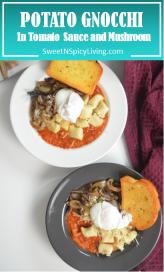 Potato Gnocchi in Tomato Sauce and Mushroom