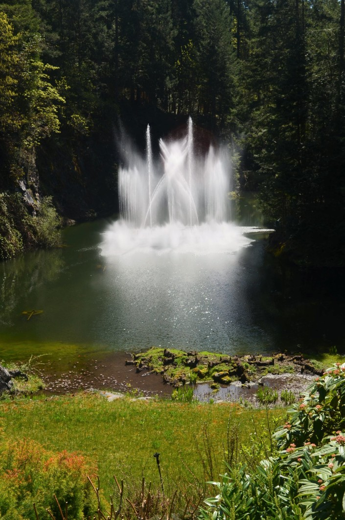 Ross Fountain Butchart Garden Spring 2019 at Victoria