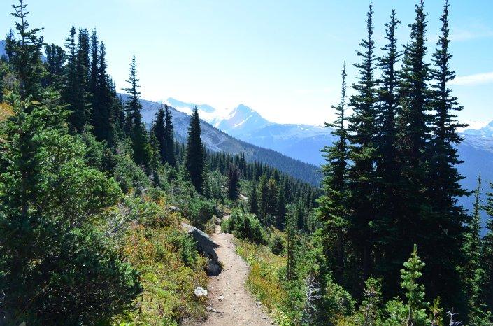 Alpine Hike