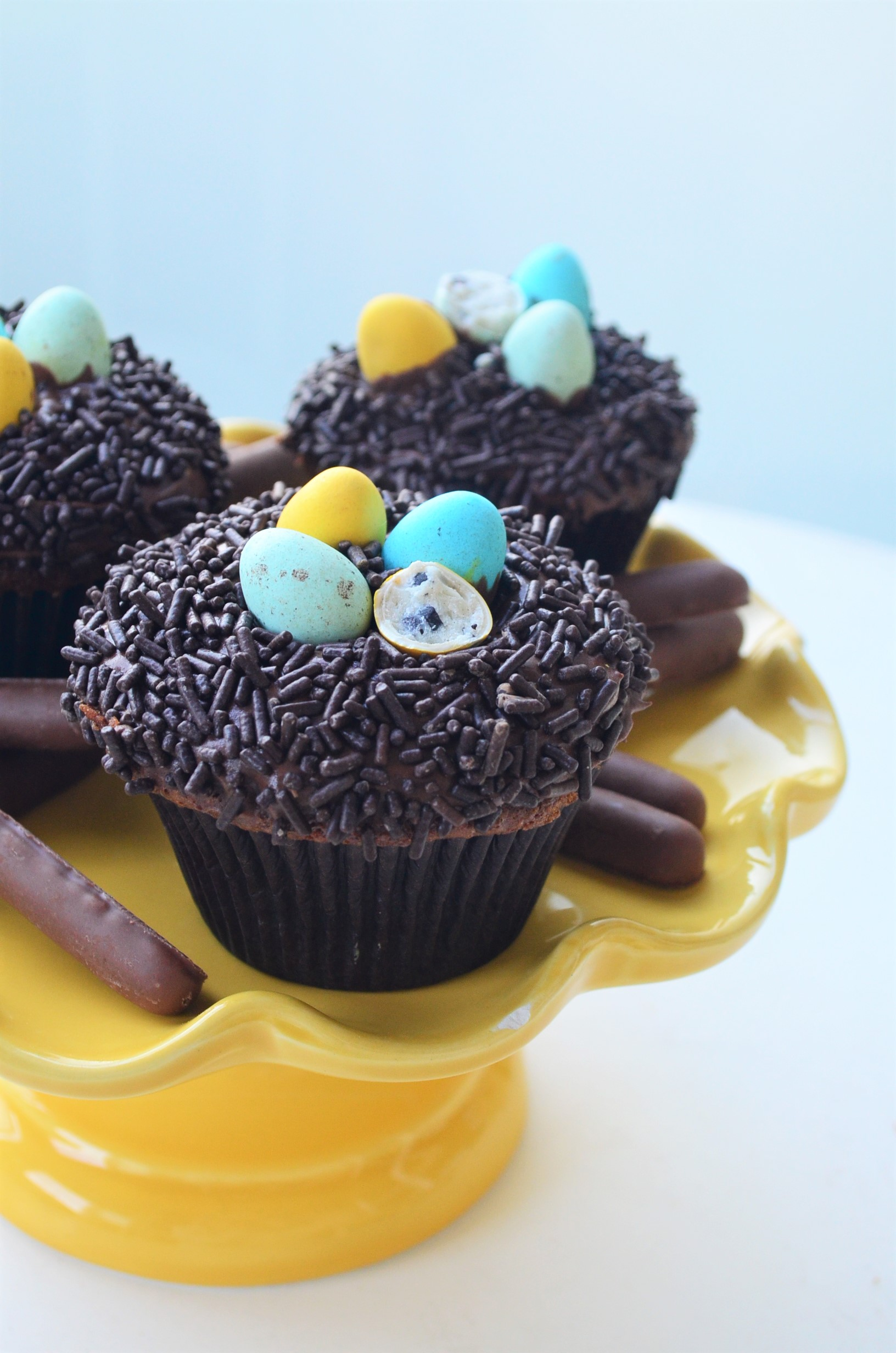 Easter Egg Nest Chocolate Cupcake