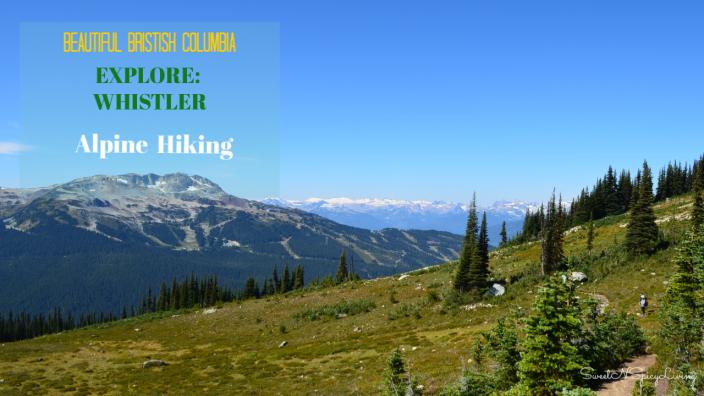 Whistler Alpine Hike 3