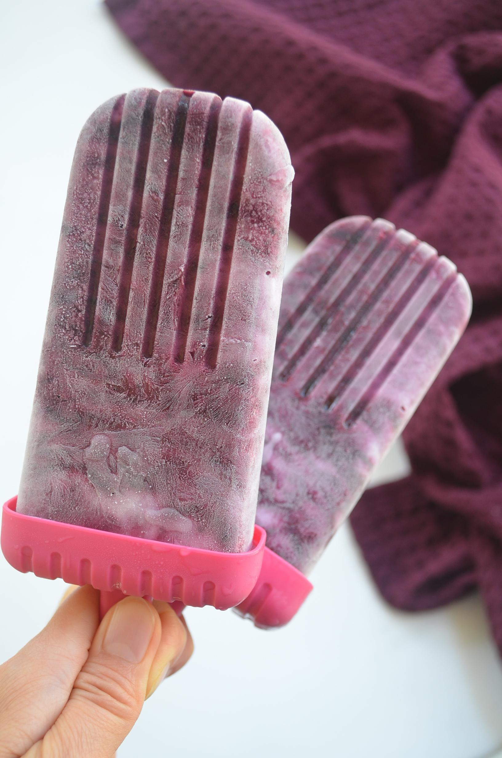 Blueberry Popsicle
