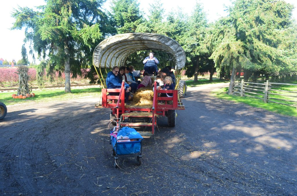 Wagon ride at the Pumpkin Patch in Richmond BC