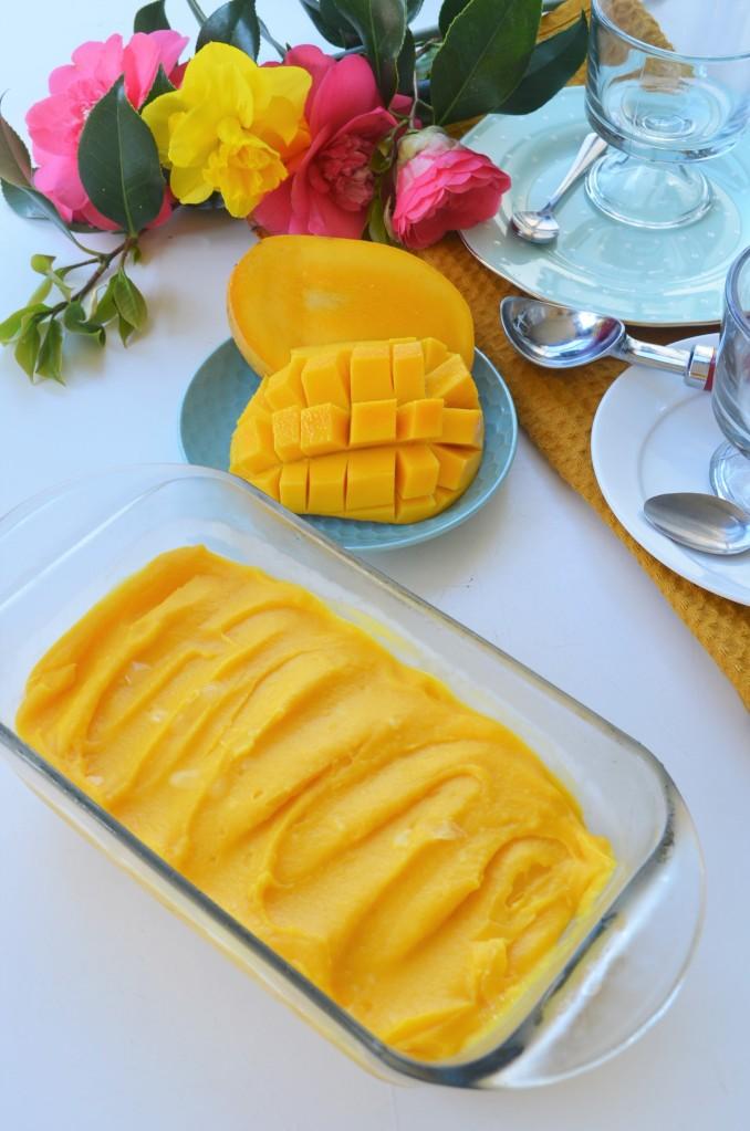 Easy Mango Frozen Yogurt By SweetNSpicyLiving